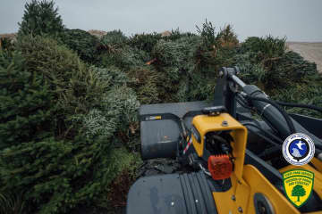 New Jersey residents dropped off more than 2,000 Christmas trees at Island Beach State Park to help build sand dunes. Now, they need help moving them into place. (New Jersey State Parks, Forests & Historic Sites/)