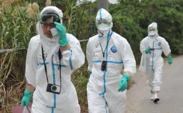 豚コレラが発生した豚舎近くで作業の準備をする県職員ら=8日午前9時50分、うるま市昆布