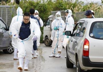 飼育豚が豚コレラに感染した養豚場に向かう沖縄県職員ら=8日午前9時52分、沖縄県うるま市
