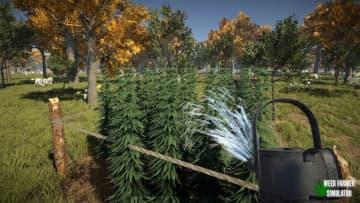 大麻農家ライフを営めるシム『Weed Farmer Simulator』Steamページが登場―2月29日に早期アクセス開始予定