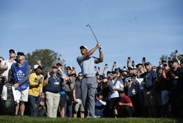 Tiger Woods hits out of the rough on the 2nd hole during the third round of the Farmers Insurance Open at the Torrey Pines Golf Course in San Diego on Saturday, Jan. 26, 2019. - K.C. Alfred/San Diego Union-Tribune/TNS