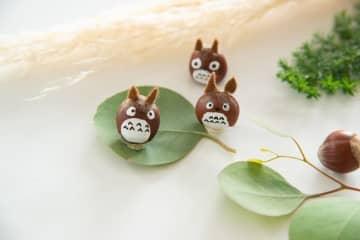 どんぐりで子どもと一緒にトトロを作ろう! 冬の木の実で作るかわいい工作