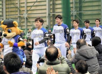 ファンの声援に出迎えられながら入場する日本ハムの新入団選手たち=12日、鎌ケ谷市