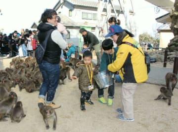 餌付け体験で小麦をまく子どもたち=13日、大分市の高崎山自然動物園