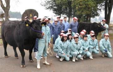 「和牛甲子園」に出品する牛2頭と南稜高総合農業科の生徒たち=あさぎり町