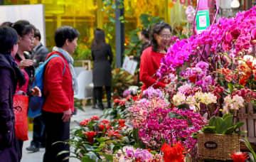 春節控え年宵花展 北京市で開幕