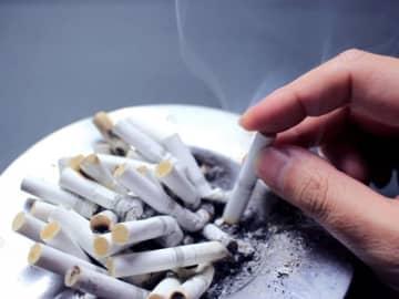 喫煙率が高いのは?