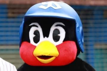 ヤクルトの人気マスコット・つば九郎【写真:荒川祐史】