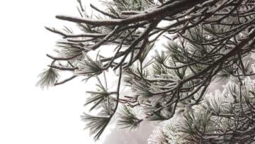 黄山が今年初の雪化粧 安徽省