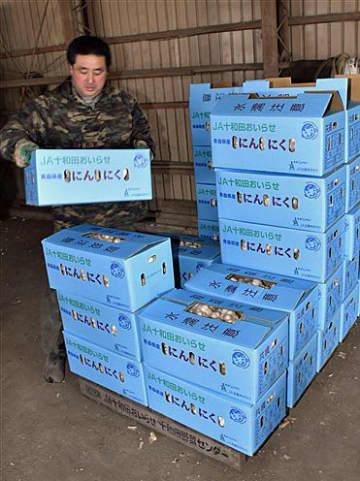 ニンニクの出荷作業に当たる十和田おいらせ農協野菜振興会の甲田会長。10キロ当たりの相場価格が「1万円を切るようでは割に合わない」と話す=15日、十和田市