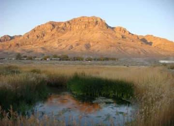 Utah wetlands