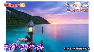 """インドネシアはバリ島だけじゃない! """"地上最後の楽園""""ラジャ・アンパットとは?"""