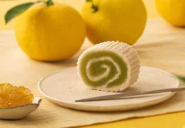 手土産にぴったり!京都の人気銘菓『京観世』の100周年記念・限定商品4つ 画像