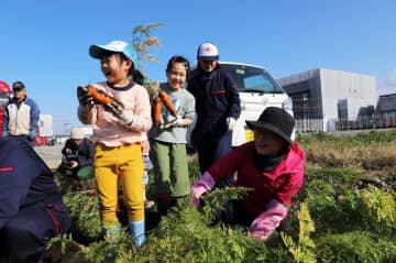 大きなニンジンを掘り出し歓声を上げる子どもたち=長崎県大村市富の原2丁目