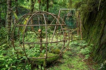 まるで「ラピュタ」の世界だ... 自然に飲み込まれた遊具が退廃的で美しい