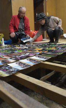 趣味の写真を乾かすなど浸水被害を受けた自宅の片付けを続ける安斉邦久さん(左)と昭子さん=水戸市藤井町
