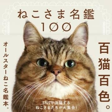 「ねこさま名鑑100」(パイ インターナショナル)