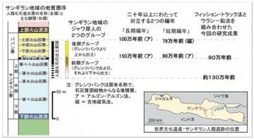 インドネシア・サンギラン遺跡のジャワ原人の編年(写真:神戸大学の発表資料より)