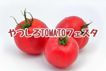 【八代トマトフェスタ2020】冬トマト生産日本一の八代でトマトのイベントが開催!