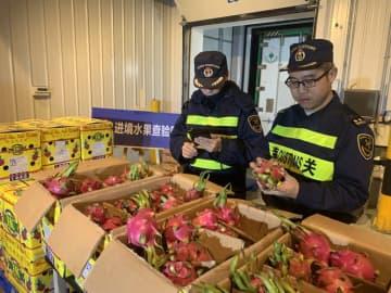 輸入果物が中国の春節市場で争奪戦