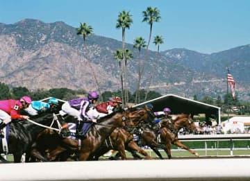 Santa Anna Raceway