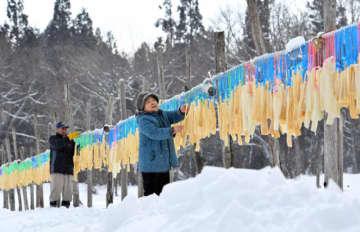雪空の下で凍み大根の出来を確かめる小森一彦さん、多恵子さん夫妻=21日、西和賀町沢内若畑
