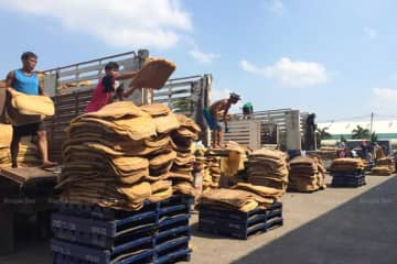 Rubber sheets being delivered at a rubber market in Surat Thani's Phunphin district.(File photo)