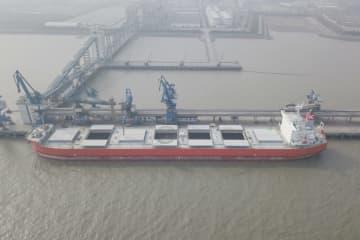 ブラジル、カナダ、アルゼンチンからの大豆輸入が4割近く増加 上海