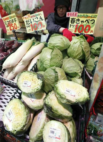 暖冬で野菜4~35%値下がり ハクサイやキャベツ、農家は苦慮 画像