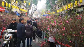年越しムードあふれる街 ベトナム