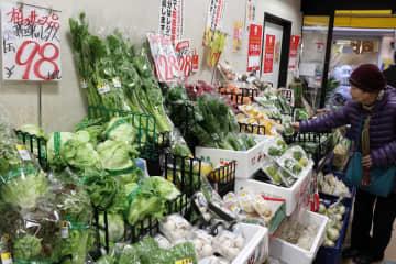 暖冬の影響で安値になったレタスなどが並ぶ店頭=長崎市築町、中村屋