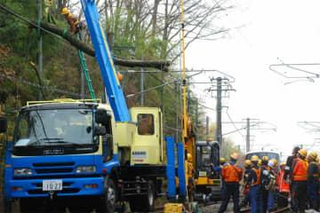 線路内の倒木を撤去する関係者ら(24日午前11時10分、木津川市市坂)