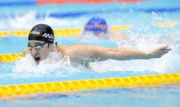 男子400メートル個人メドレー決勝 優勝した瀬戸大也のバタフライ=東京辰巳国際水泳場