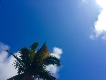 那覇市で27.6度 1月の観測史上、最高気温を更新