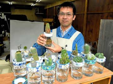 美濃焼の多肉植物水耕栽培キット「SaiSui」=土岐市肥田町、大東亜窯業