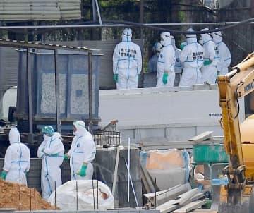 新たに感染が確認された養豚場に集まった自衛隊員ら=1月15日、うるま市(望遠レンズで撮影)