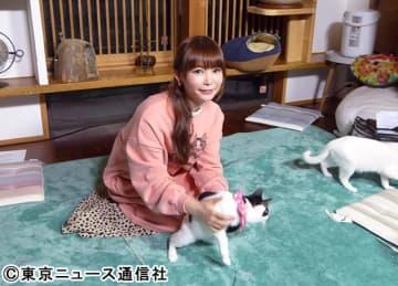 """2月22日""""猫の日""""は""""BSキャ東""""で猫感謝祭!! 中川翔子「一滴の毒もない空間」"""
