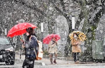 激しく雪が降る中、通りを行き交う人たち=2月5日午後3時20分ごろ、福井県福井市大手3丁目