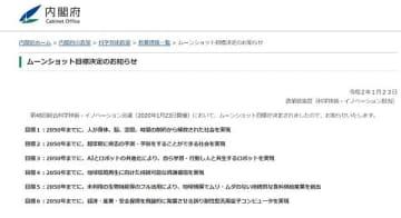 画像は内閣府ホームページのキャプチャ。