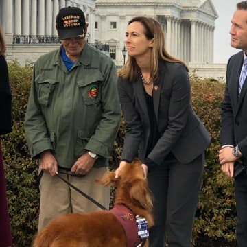 Rep. Mikie Sherrill pets Jackson, a service dog owned by Vietnam veteran Walter Parker. (Courtesy Rep. Mikie Sherrill's office) (Courtesy/)