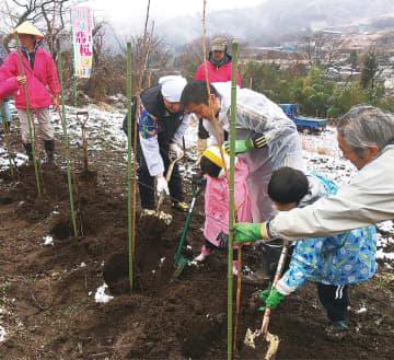 植樹式で八重桜を植える参加者