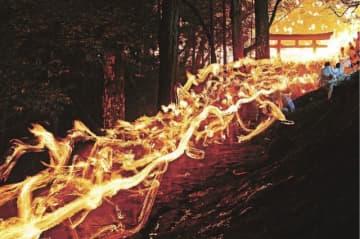 炎の竜が駆け下る 新宮市で御燈祭り