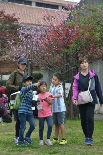 3キロファミリー向けコースでビンゴを楽しみながら歩く参加者=9日、浦添市安波茶・浦添市立図書館