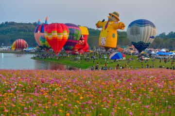 Singha Park Chiang Rai International Valentine's Balloon Fiesta. Singha Park Chiang Rai