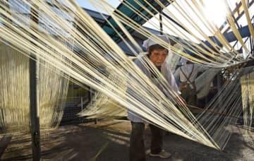冬の日差しに輝く白糸 熊本・南関町で寒そうめん作り