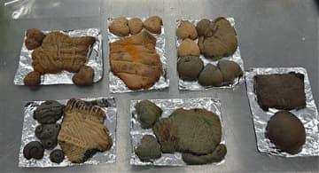 児童が完成させたドッキー。左下がヤミラさんが作ったお手本