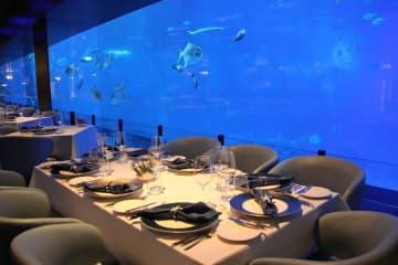 シンガポールのリゾート・ワールド・セントーサ内の水族館にあるレストラン。魚を観賞しながら料理が楽しめる