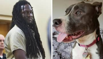 Aaron Davis, of Long Branch, was found guilty Thursday of leaving a caged dog on the banks of the Shrewsbury River last year. (Monmouth County Prosecutor's Office/)
