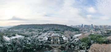 日光に照らされた武漢大学の雪景色