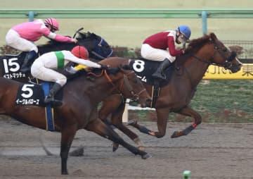 イーグルバローズ(左手前)の猛追を振り切るショーム(右)